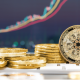 Where to buy Cardano: ADA comes up with hard fork news Alonzo